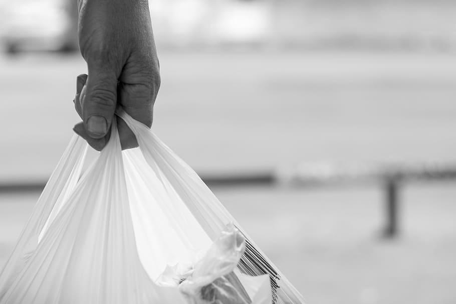 New York Bans Plastic Bags to Address Environmental Blights