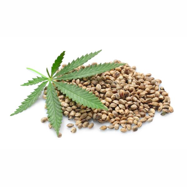 hemp seeds are high in omega-3 fatty acids
