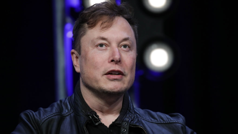 There's an over-allocation of talent in finance and law, Elon Musk