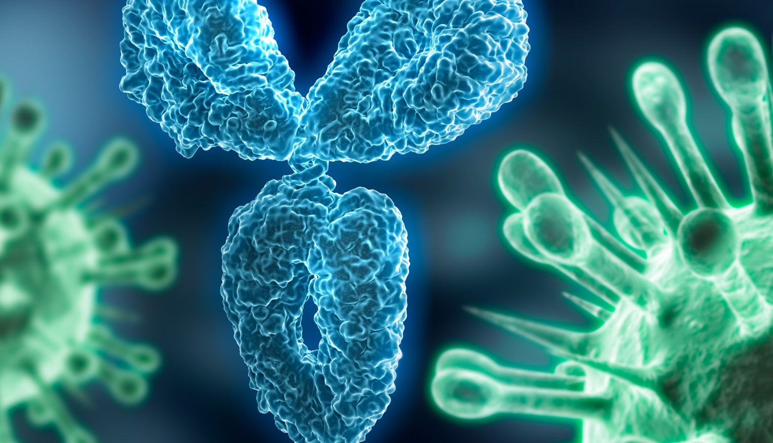 People carry antibodies after recovering from Coronavirus